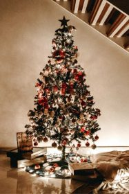 Possible Free Full Decorated Christmas Tree from (Apply)